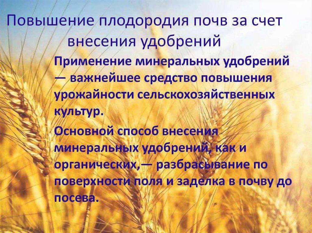 Как можно повысить плодородие почвы?