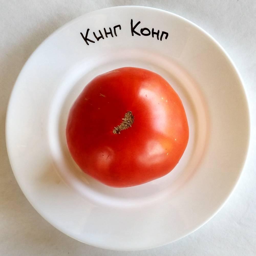 Томат кинг конг - описание и характеристика сорта
