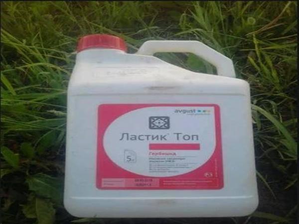 Инструкция по применению и состав гербицида Ластик Топ, норма расхода