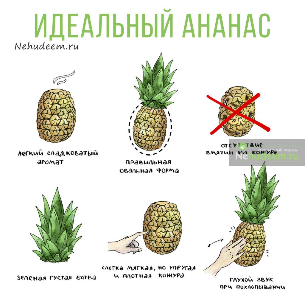 Как выбрать ананас — хороший, спелый и вкусный — в магазине или на рынке + видео