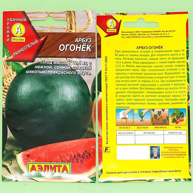 Описание арбуза огонек: основные особенности выращивания и ухода