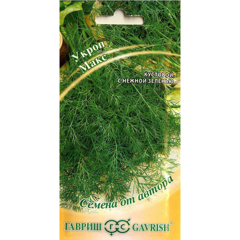 Укроп, описание, виды и сорта, фото, условия выращивания. уход, болезни и вредители