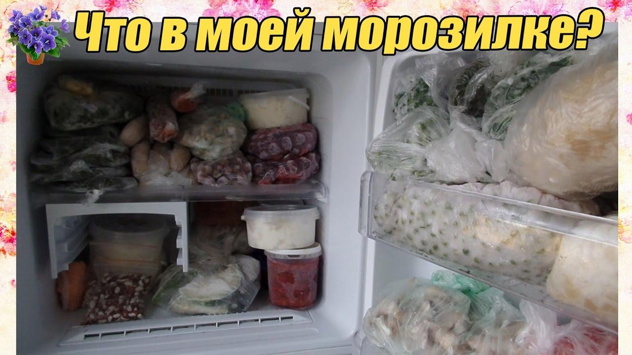 Как заморозить шампиньоны: свежие в морозилке, целые и резаные, сроки хранения