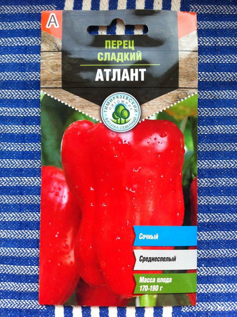 Перец атлантик f1: отзывы, фото, урожайность, описание сорта