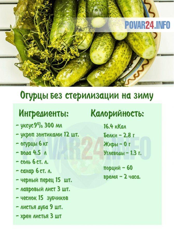 Огурцы в заливке на зиму: рецепты пошагового приготовления и правила хранения