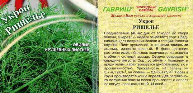 Укроп кустовой сорта