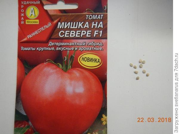 Томат мишка косолапый : описание сорта, достоинства и недостатки, особенности выращивания русский фермер
