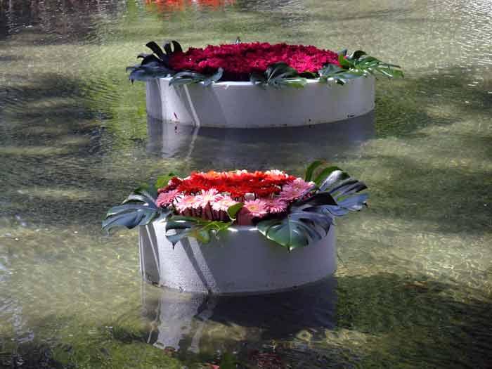 Аэраторы для искусственных водоёмов: назначение, виды, лучшие модели