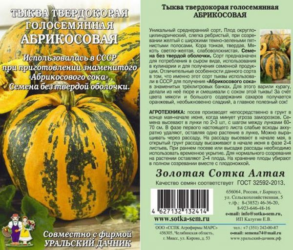 Виды и описание сортов мускатной тыквы, выращивание и уход в открытом грунте