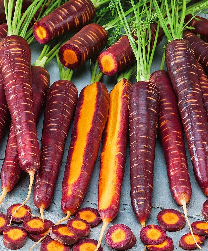 Что такое фиолетовая морковь и ее сорта?