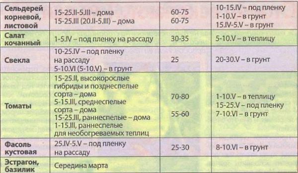 Когда в апреле сеять помидоры на рассаду: как проводить процедуру для семян томатов, в каких числах лучше всего это делать, можно ли перенести сроки? русский фермер