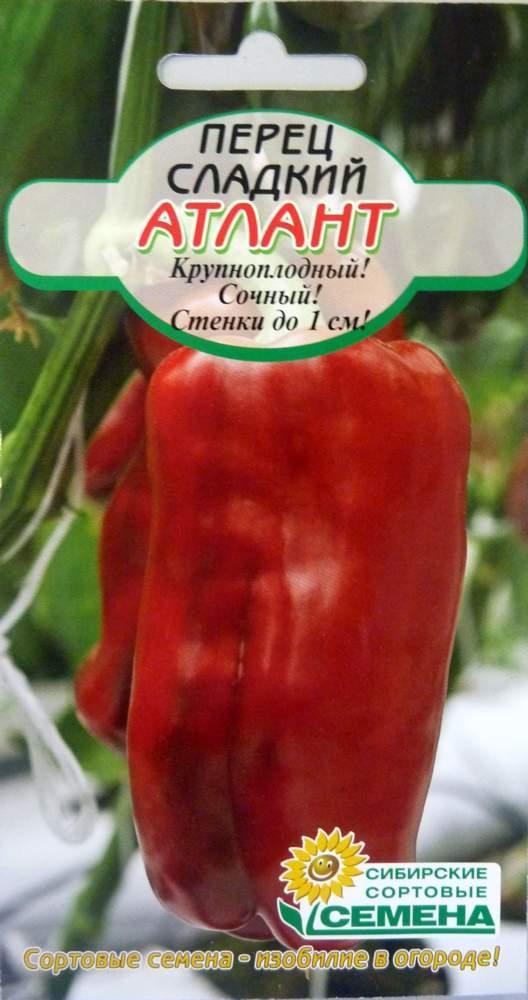 ✅ перец атлантик описание сорта фото - питомник46.рф