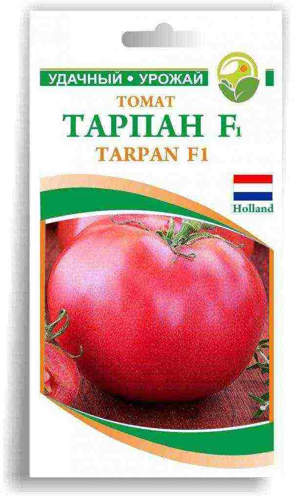 Характеристика томатов сорта тарпан - журнал садовода ryazanameli.ru