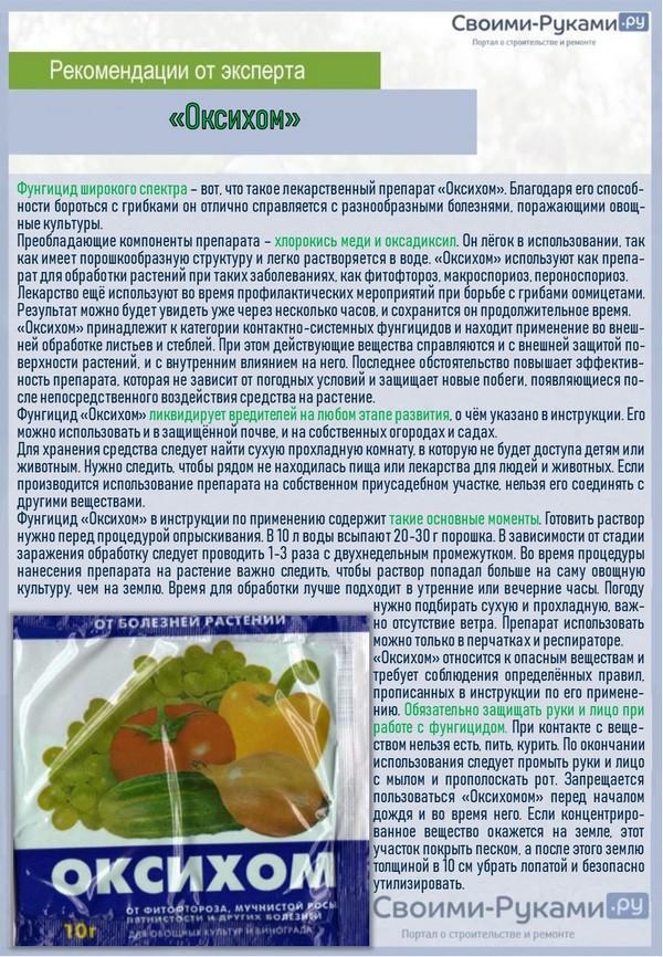 Возможные болезни огурцов в теплице и методы их лечения