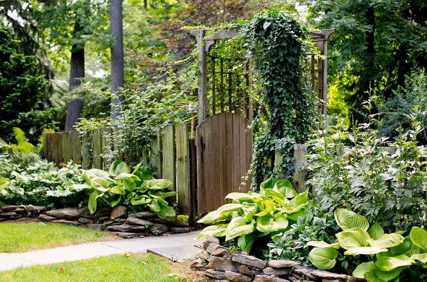 Лучшие стили ландшафтного дизайна — современные и классические варианты организации сада и придомового участка (120 фото + видео)