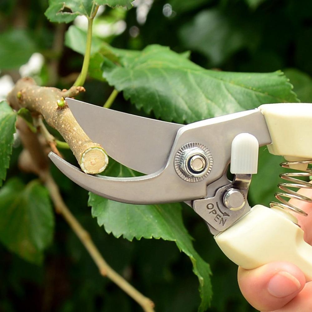 Секаторы садовые — как выбрать инструмент для обрезки садовых деревьев, какой секатор лучше, видео
