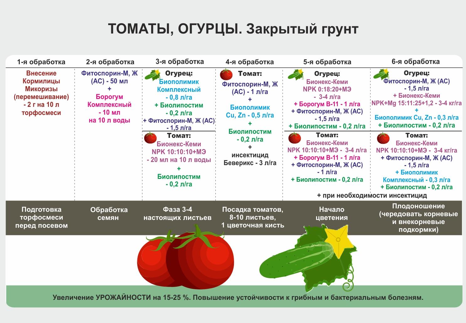 Томат гордость сибири: отзывы, фото кустов и плодов, плюсы и минусы выращивания данного сорта и секреты агротехники