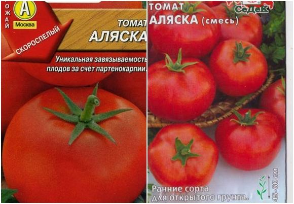 Аляска — подробное описание универсального томата