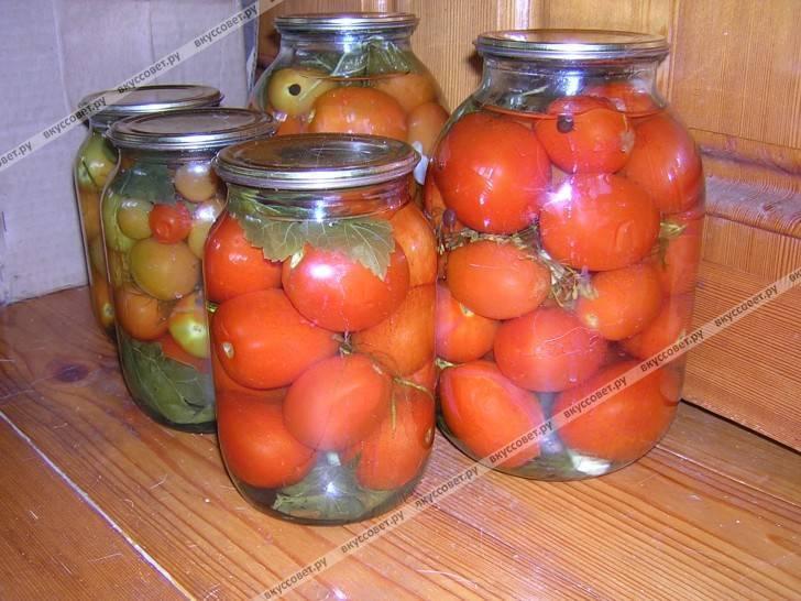 Почему мутнеют помидоры в банках: что делать с рассолом, основные причины