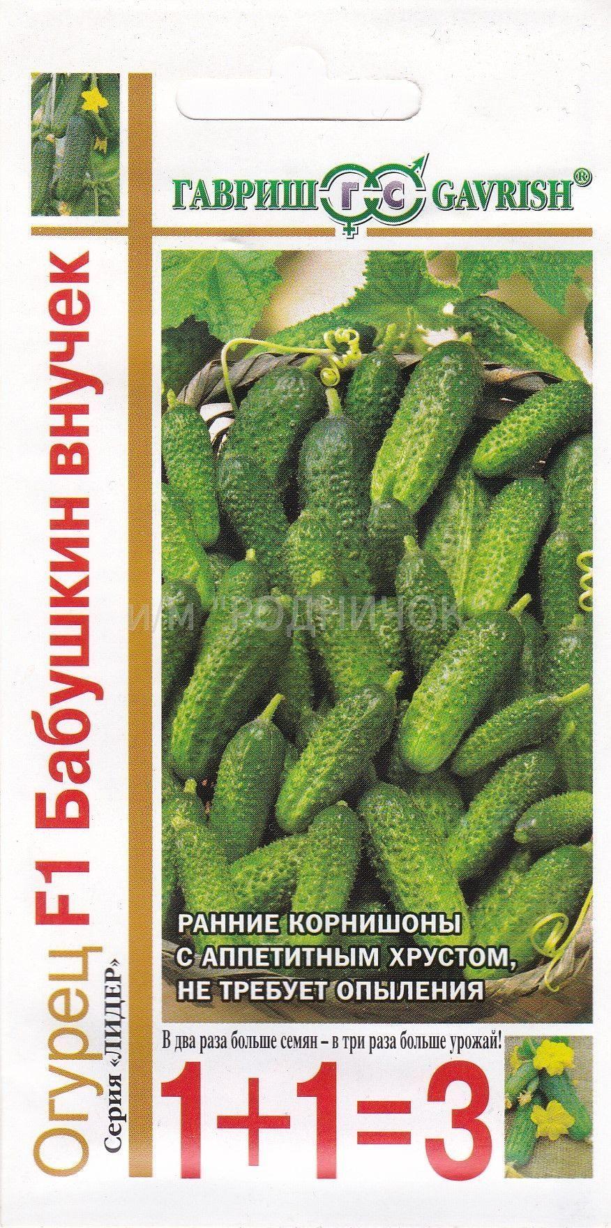 Огурцы внучок f1: отзывы, фото, описание высокоурожайного раннего сорта