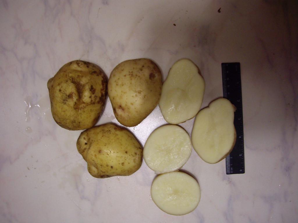 """Картофель """"зекура"""": описание сорта, характеристики"""