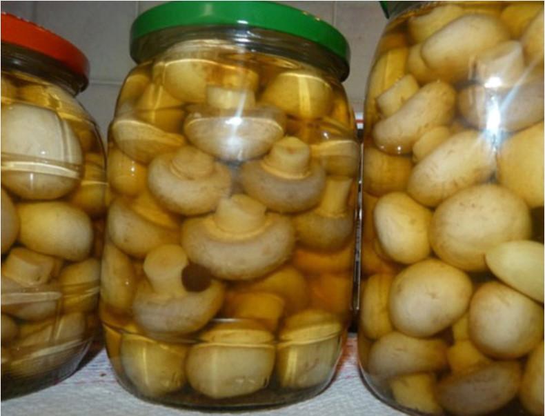 ТОП 10 самый вкусных рецептов быстрого приготовления маринованных шампиньонов на зиму в домашних условиях