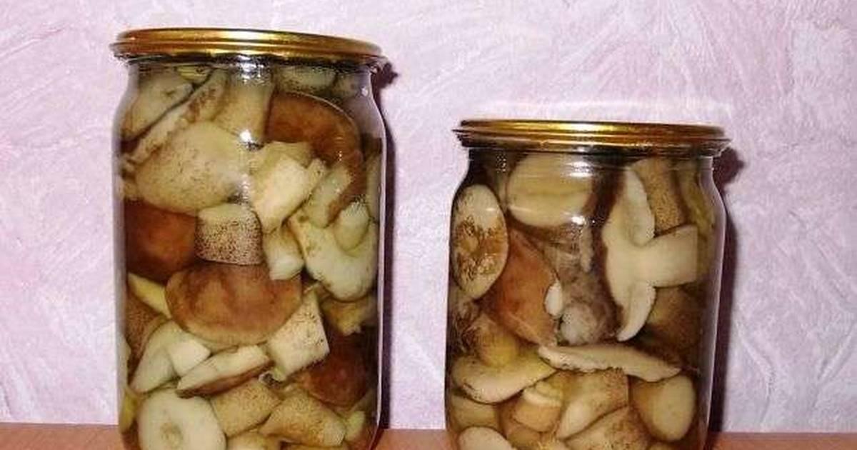 Как готовить подберезовики - способы подготовки грибов и рецепты вкусных блюд