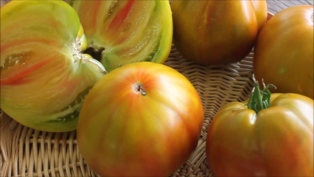 Томат заржавевшее сердце эверетта - характеристика и описание сорта, фото помидоров, отзывы