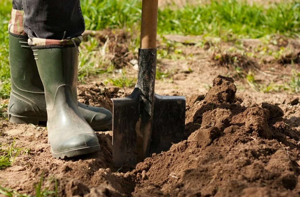 Когда и зачем копать огород, как правильно перекапывать грядки