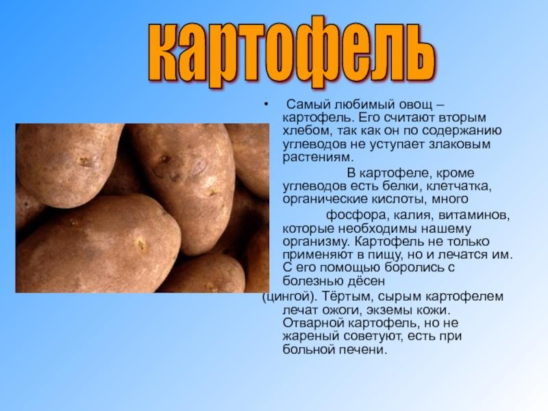 Вареный картофель: польза и вред для организма человека, какие витамины и калорийность содержатся в 1 шт, таблица микроэлементов молодого овоща, сколько сахара