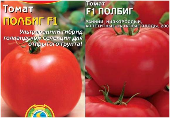 Описание томата полбиг f1, особенности посадки и ухода