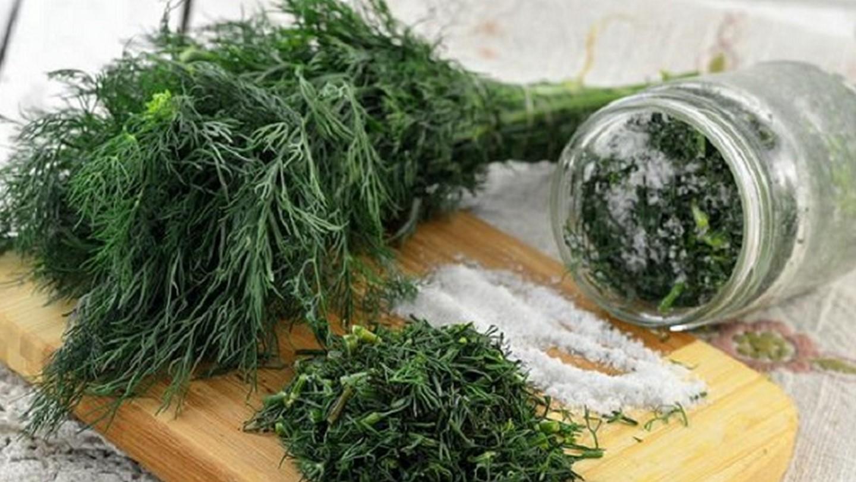 Можно ли замораживать кинзу в морозилке, как в домашних условиях сохранить в холодильнике, чтобы оставалась свежей, не теряя аромат и заготовки из зелени на зиму