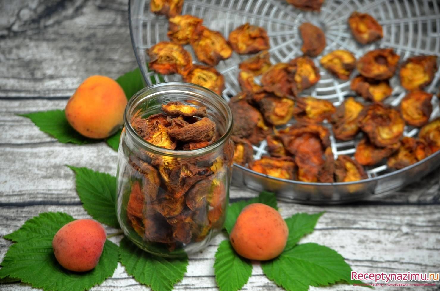 ТОП 6 рецептов приготовления сушеных абрикосов в домашних условиях