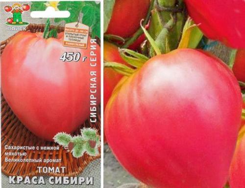 Семена томат тлаколула де матаморос: описание сорта, фото. купить с доставкой или почтой россии.