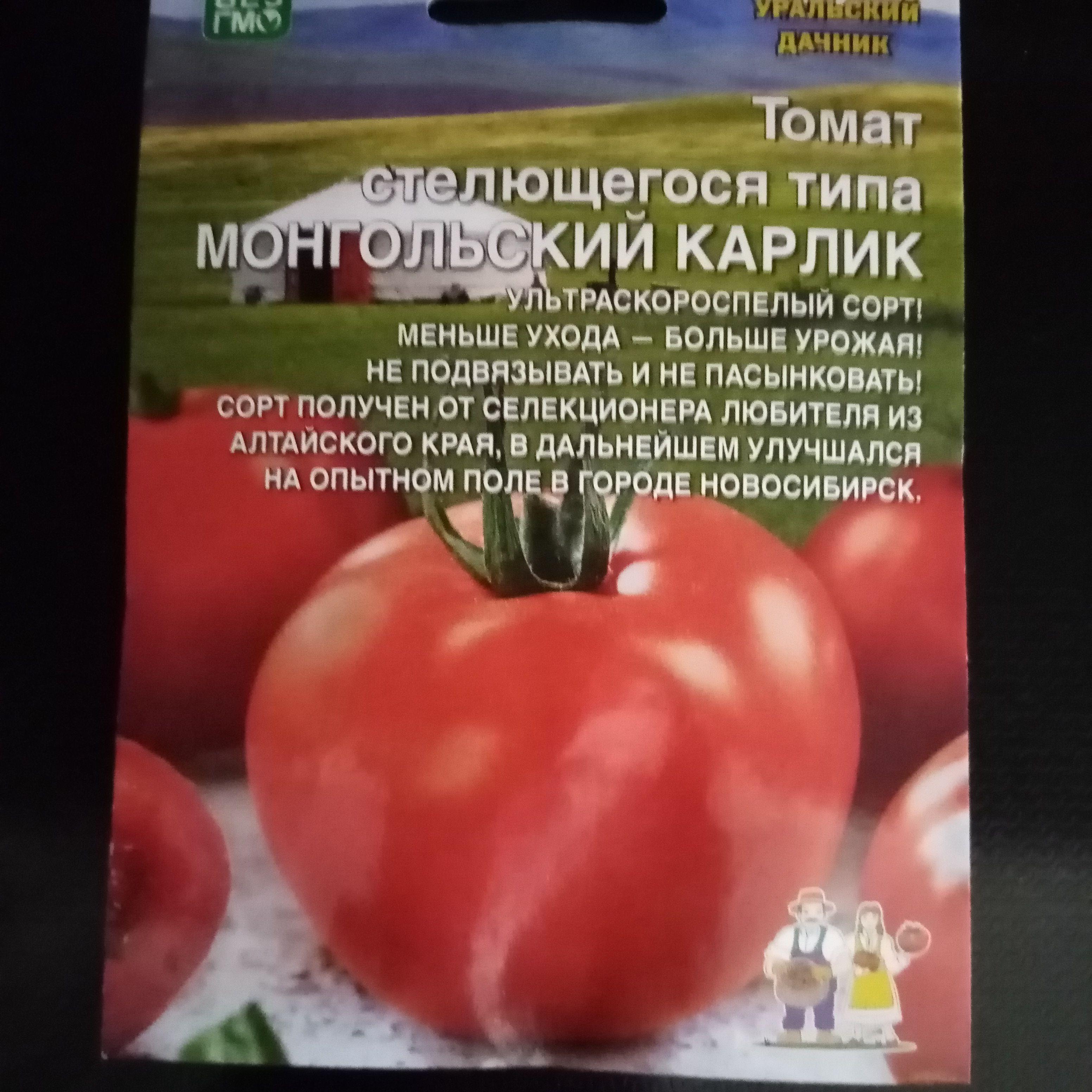 Томат великосветский: описание сорта, фото, отзывы, урожайность