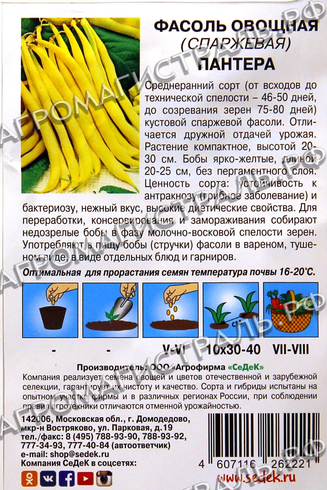 Спаржевая фасоль: описание и фото сортов и разновидностей, сорта спаржевой фасоли