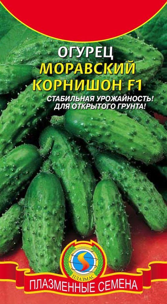 Огурцы корнишоны: 20 лучших сортов и гибридов по отзывам тех, кто сажал и выращивал