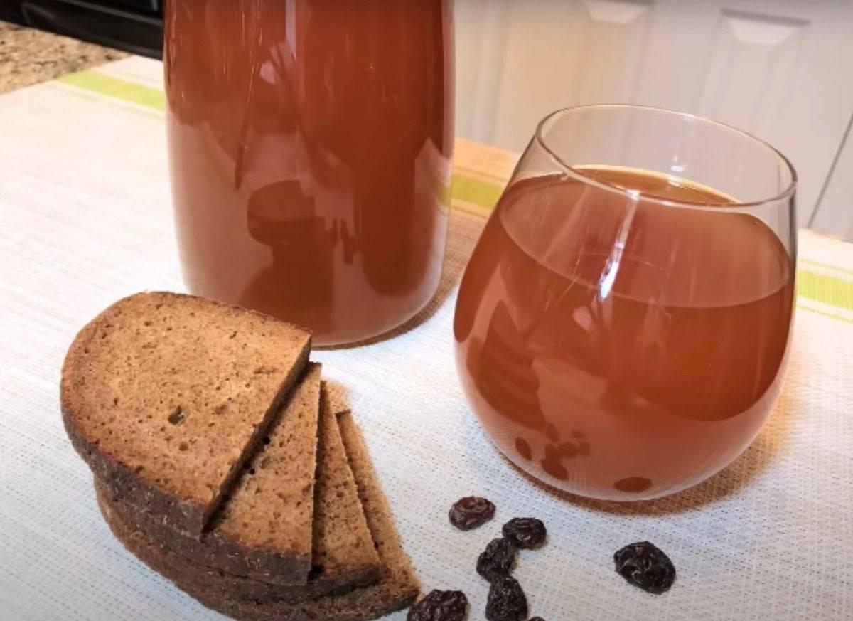 Свекольный квас: рецепт приготовления в домашних условиях, польза и вред, как принимать в лечебных целях, пить от давления