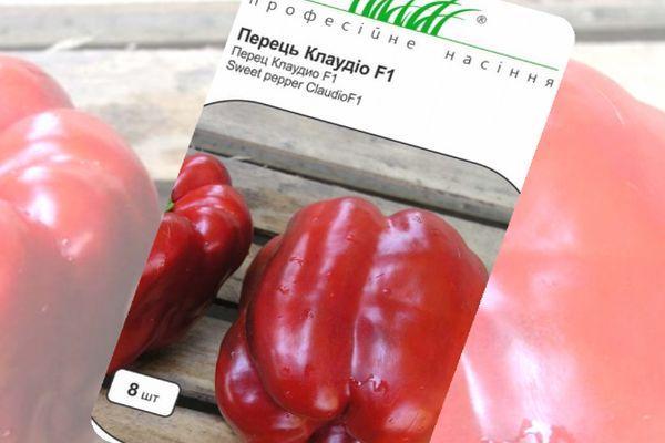 """Перец """"клаудио"""": характеристика сорта, описание, отзывы, урожайность"""