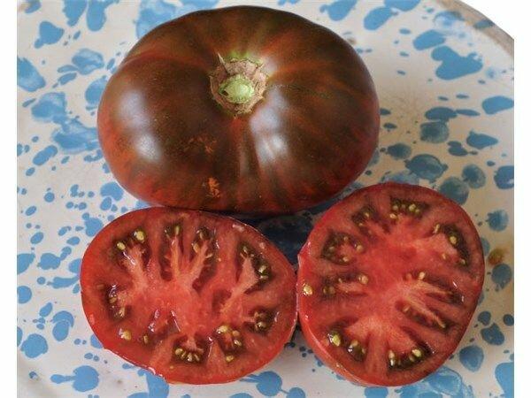 Томат поль робсон описание сорта. крепкий и устойчивый сорт — томат поль робсон: полное описание помидоров и их характеристики