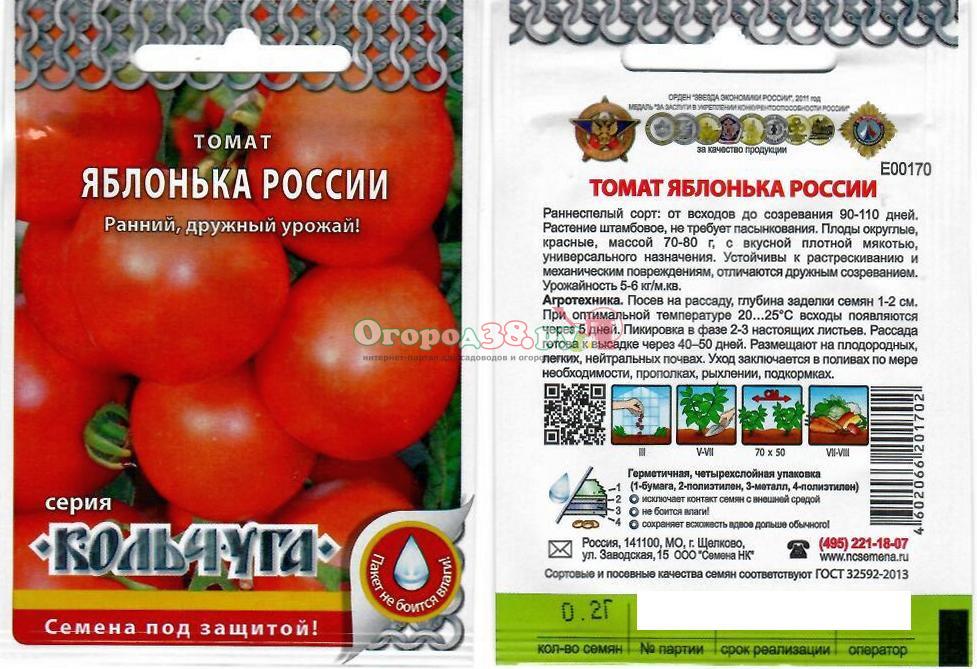 Идеальный томат с необычным названием — «яблонька россии»: описание сорта, характеристики и фото