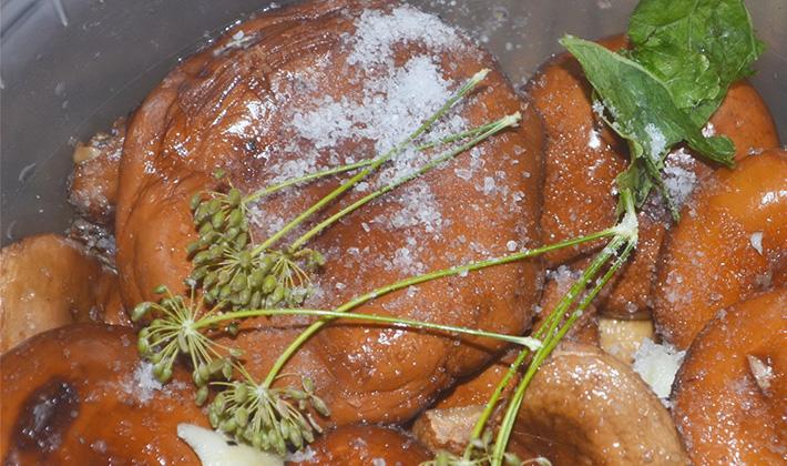 Грибы рыжики: как готовить, рецепты приготовления блюд, фото и видео