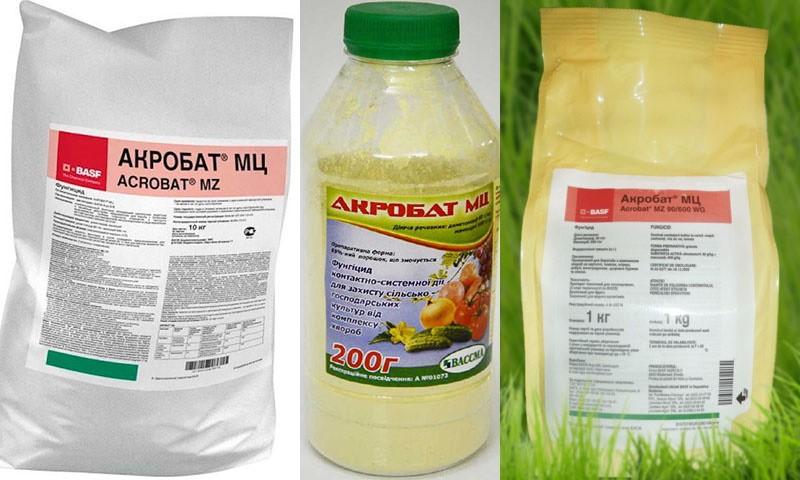 Фунгицид акробат мц - инструкция по применению, отзывы садоводов, состав препарата, цена, нормы расхода