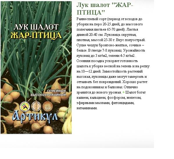 Лучшие новые сорта и гибриды репчатого лука. список с фото и описаниями — ботаничка.ru