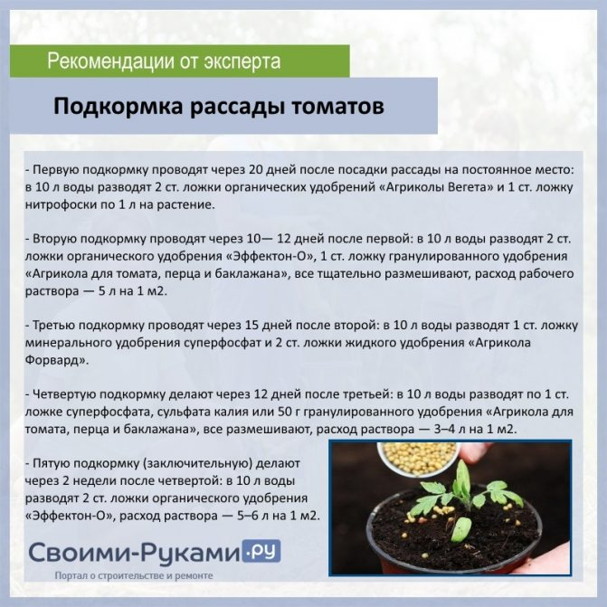 Можно ли подкормить капусту народными методами при высадке в открытый грунт и в другое время и чем лучше?