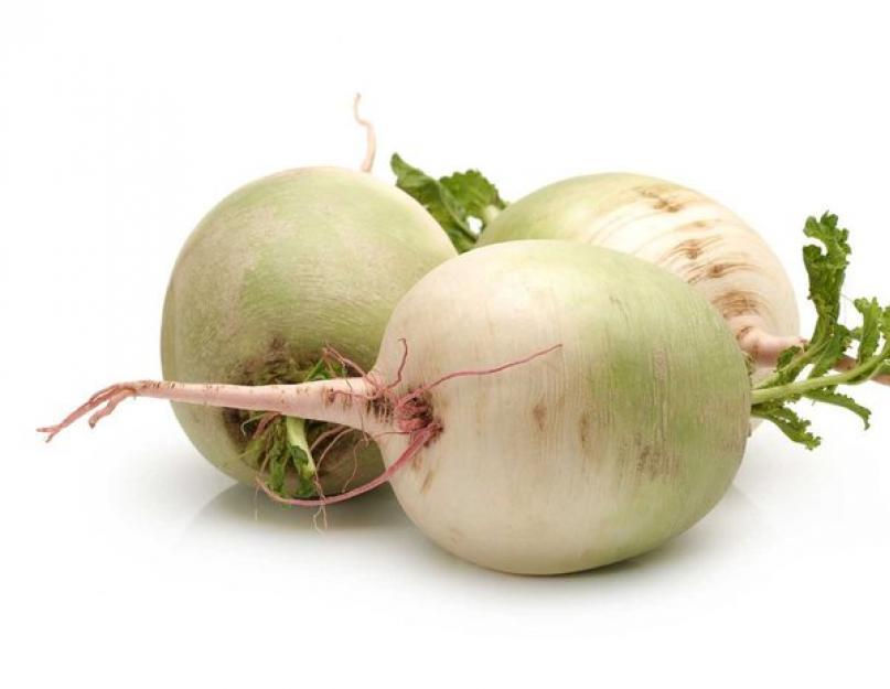 Редька посевная: полезные свойства, выращивание, сорта, агротехника, рецепты