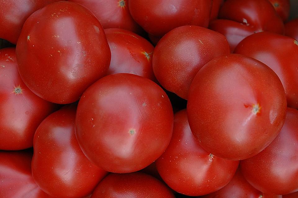 Томат волгоградский скороспелый 323: характеристика и описание сорта, фото, особенности выращивания