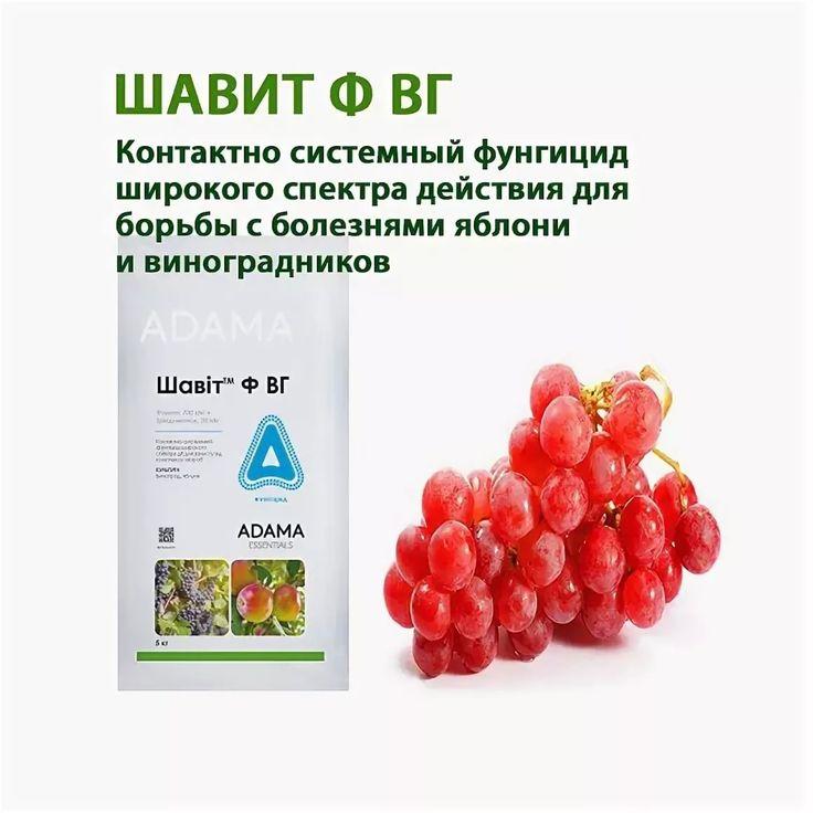Инсектофунгициды — виноград