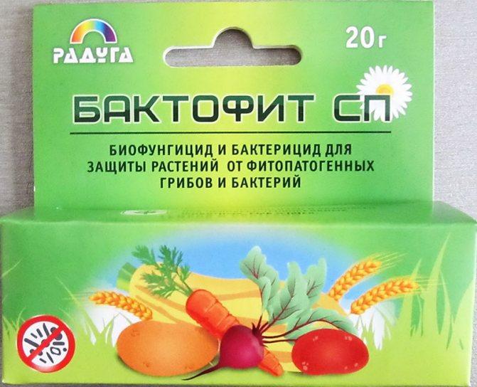 Борьба с болезнями растений с помощью фунгицидов, список препаратов