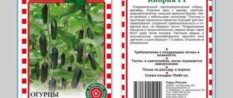 Огурцы фурор f1: описание сортая. посадка, фото. советы садоводов